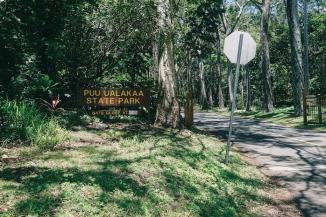 State Park-4
