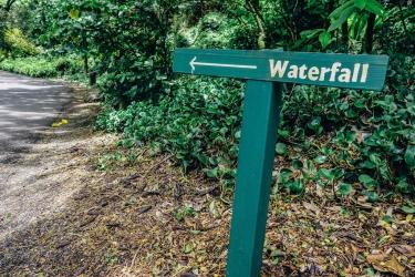 Waemea Valley-2