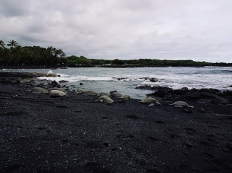 Black Sand Beach-4