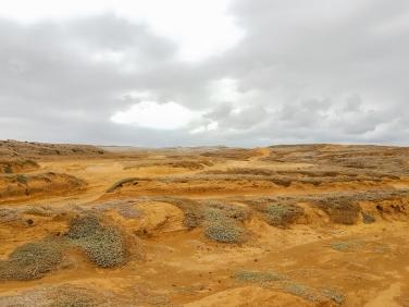 Green Sands-4