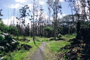 Lava Trail-2