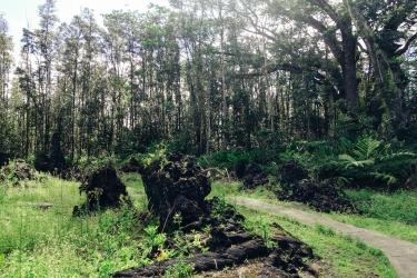 Lava Trail-3