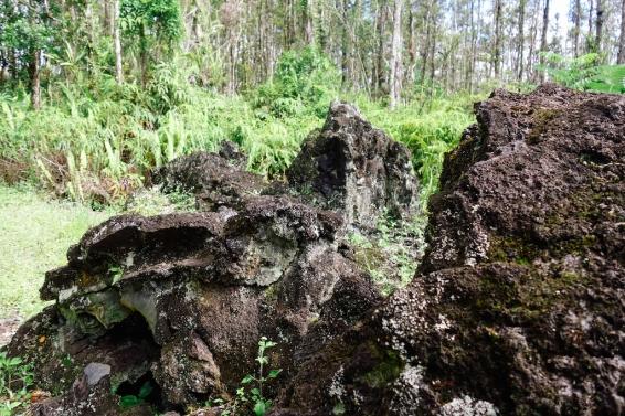 Lava Trail-5
