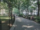 madison-square-park-2