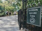 madison-square-park-3
