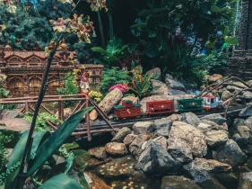 train-show-6