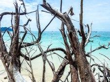 Poda Island (6 of 8)