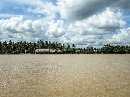 Mekong Delta-1