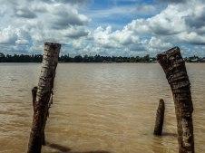 Mekong Delta-3